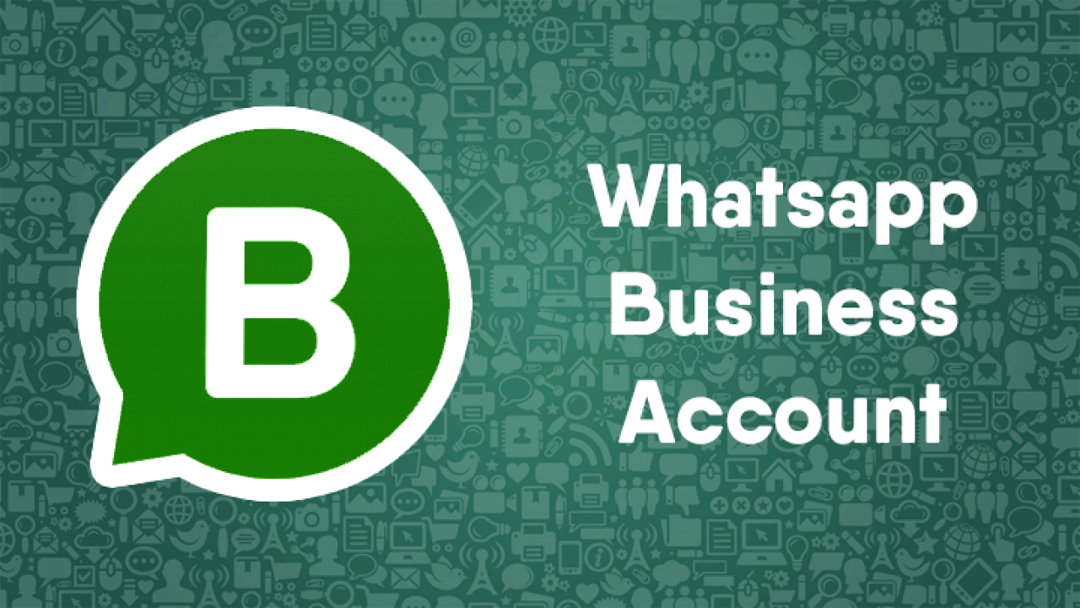 Whatsapp Business Account- Everything You Need to Know